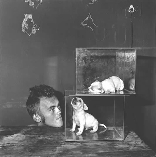 Roger Ballen, Shadow Chamber, Puppies in Fishtanks, 2000
