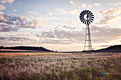 Toowoomba (BJRainbow) Tags: sunset orange sun game windmill field silhouette clouds landscape purple wind dusk farm pump fields toowoomba windpump bigmomma secondchancechallenge chosenchallengers beginnerdigitalphotographychallengewinner achallengeforyou rainbowphotography thechallengefactory challengefactory storybookwinner gamesweepwinner photographyfromthepeople motherofallchalleges