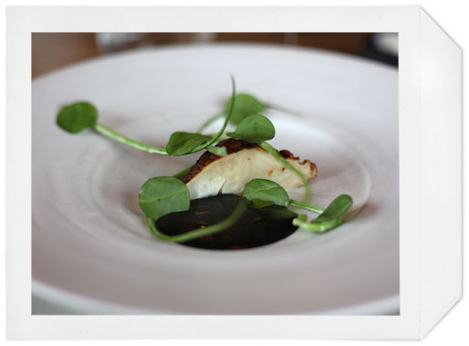 noma_celeriac_&_black_truffle