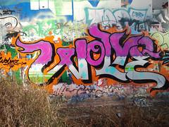 wolve (Barrybu) Tags: street chicago art graffiti rockford wolve