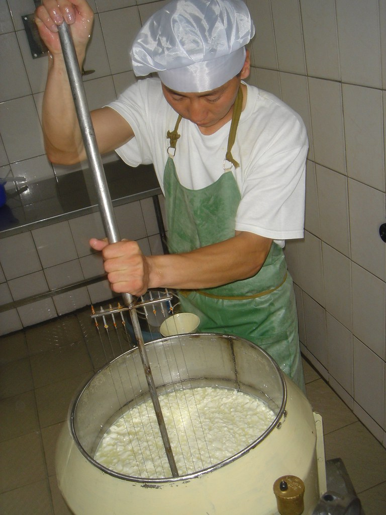 Fabrication de fromage: phase de decaillage, Centre Sum de Onder-Ulaan, Arkhangaï, Mongolie