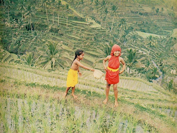 bazaar1969