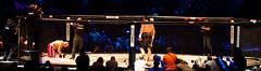 MMA Attack 2011 - gala