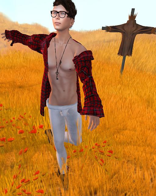 Field of Dreams 1