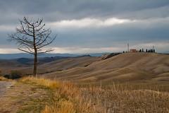 Tree over landscape (Karmen Smolnikar) Tags: italy house tree landscape hills soil tuscany toscana cretesenesi