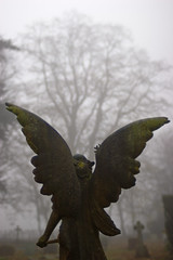 Lifting (Skink74) Tags: uk morning england sculpture mist tree 20d cemetery grave statue fog stone angel wings memorial dof bokeh hampshire canoneos20d lichen hursley nikkor35f14 nikkor35mm114ai
