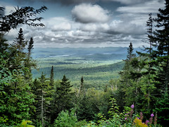 New York's Wilderness (PlotzPhoto) Tags: statepark trees summer sky usa mountain ny newyork mountains nature clouds forest landscape adirondacks upstateny upstatenewyork newyorkstate wilderness hdr adirondack whiteface adirondackmountains