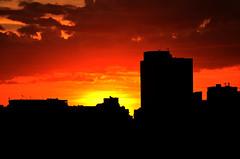 alvorada (Rodrigo_Soldon) Tags: sunset brazil sun sol rio brasil del sunrise de point dawn soleil zonsondergang do tramonto sonnenuntergang janeiro alba coucher du jour amanecer pôrdosol aurora salida dämmerung sunrises dawning sole sonnenaufgang morgen ocaso 日落 por alvorada naissance amanhecer nacimiento ipanema sunup madrugada lever aurore nascer inizio aube giorno alborada principio pôr 日出 黎明 raíces 日の出 morgendämmerung 夜明け frühe שקיעה 새벽 восход beginn dageraad солнца рассвет tagesanbruch anbruch 해돋이 αυγή occidens levata भोर सूर्योदय डॉन সূর্যোদয় বিহান