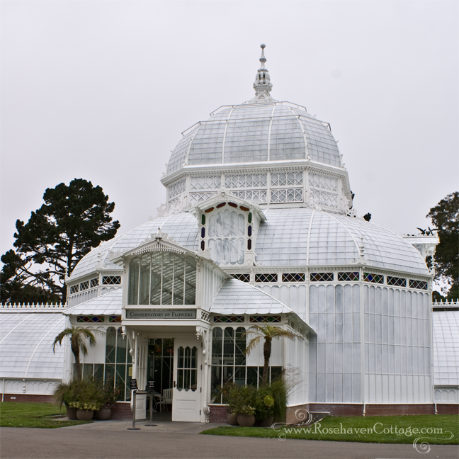 Conservatory of Flowers San Francisco 2011