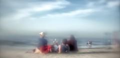 Crane Beach (Jacekms) Tags: diylens sonynex