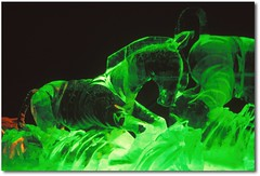 Ice sculpture....Zebras in green (powerfocusfotografie) Tags: light green film ice netherlands colors zoo nikon colours nightshot wildlife slide dia scan zebra icesculptures henk drenthe emmen zebras diapositive dierenpark africananimal dierenparkemmen hippotigris powerfocusfotografie