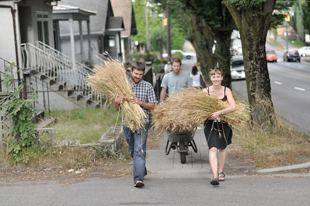wheat-carrying-to-church