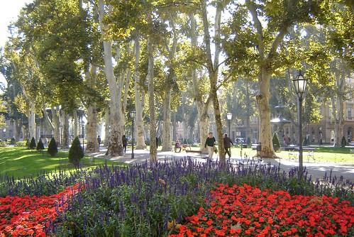 Plataanipuisto Zagrebissa by Anna Amnell