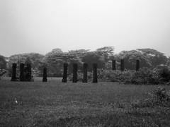 Stone Columns in the Center of Sisupalgarh (nbg90455) Tags: blackandwhite bw india orissa mjb sisupalgarh