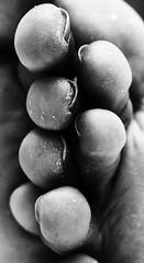 Gioco di dita (polafol) Tags: bw feet digitale nail fingers bn particular arti bianconero piedi dita biancoenero corpo republicadominicana santodomingo toenail particolari happyfeet piedini blackwithe unghie estremit polafol masieroalessandro blackendwithe dahianagerardo particolaridelcorpo