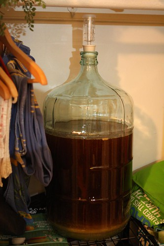 Carboy with Wort in Closet