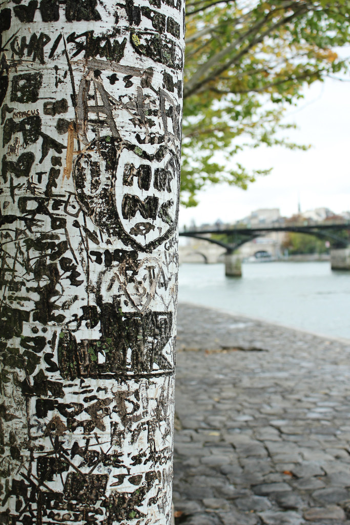 marks along the seine