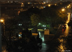 Fresca lluvia