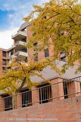2011 More Fall Exteriors-134.jpg (Eastern Washington University) Tags: fall college campus la washington university cheney wa morrison eastern ewu easternwashingtonuniversity streeter dryden dressler