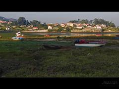 Barcas sobre verde (Rodion Quidam (OFF for a while, this is awful)) Tags: building verde green beach boat barca edificio playa galicia algae algas poio ríadepontevedra lourido musictomyeyeslevel1