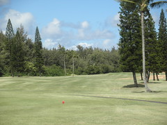 Turtle Bay Colf Course 181