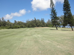 Turtle Bay Colf Course 184