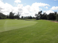 Turtle Bay Colf Course 298