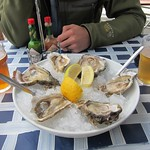 "Oysters <a style=""margin-left:10px; font-size:0.8em;"" href=""http://www.flickr.com/photos/14315427@N00/6299048532/"" target=""_blank"">@flickr</a>"
