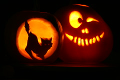 31 - Oct - 2011 - Happy Halloween! (Pittypomm) Tags: orange halloween face silhouette cat pumpkin carved candle