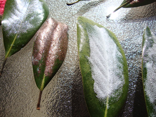 glittery magnolia leaves