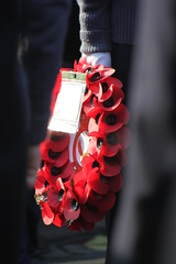 In Flanders fields the poppies blow (CWigs) Tags: bedford war remember peace poppy poppies remembrance 11thnovember royalbritishlegion poppyappeal