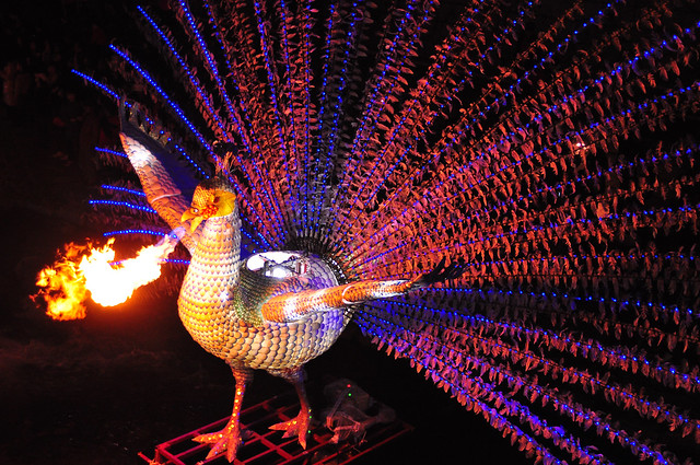 Peacock Breathing Fire (who would have thought!) Seoul Lantern Festival