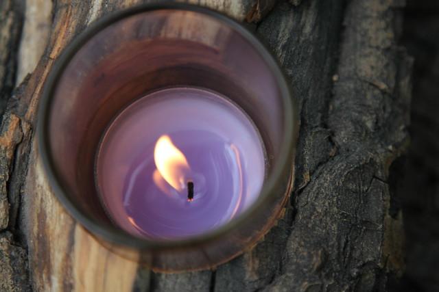 7302 candlelit