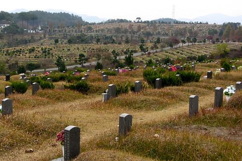 graveyard21