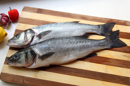 European Seabass (Lubina) by flydime, on Flickr