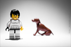 327/365 Dog Training - Hundeerziehung (photography.andreas) Tags: lego minifig 365 project365 photography canon eos40d canoneos40d canonefs1855mmf3556is germany deutschland saarland urweiler series minifigure minifigs macro