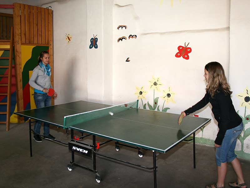 Ferienhof Laux - Tischtennis