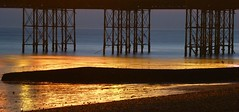 Golden groyne (mikeosbornphoto) Tags: sea beach reflections brighton pebbles brightonbeach groyne brightonpier pierlegs stonegroyne