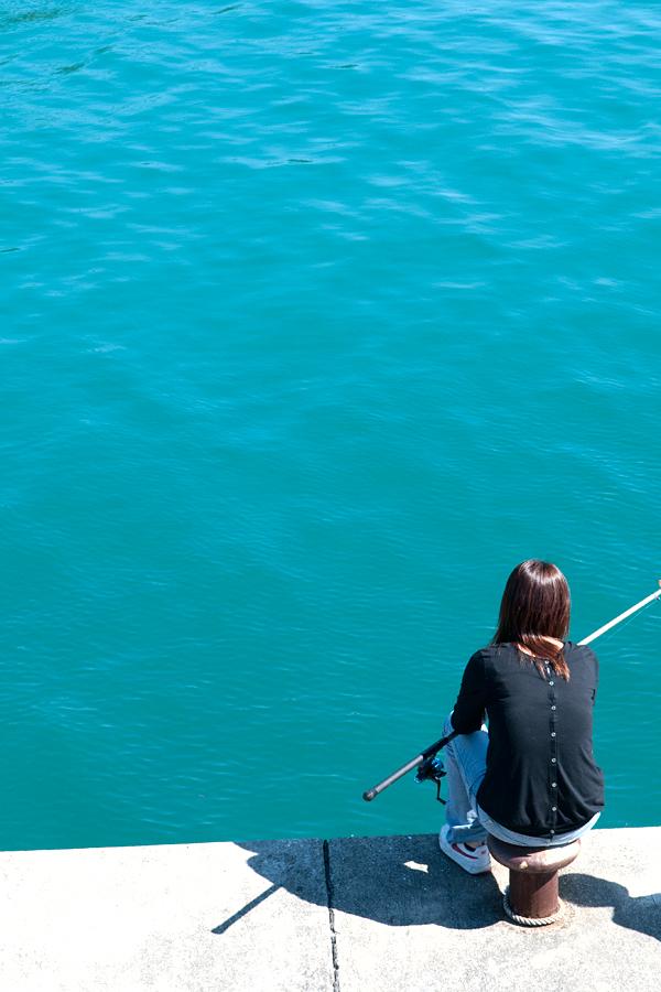アオリイカ釣り|和歌山県