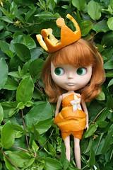 Queen Tangerine