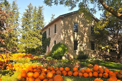 Fall at Stroms by felixtrio