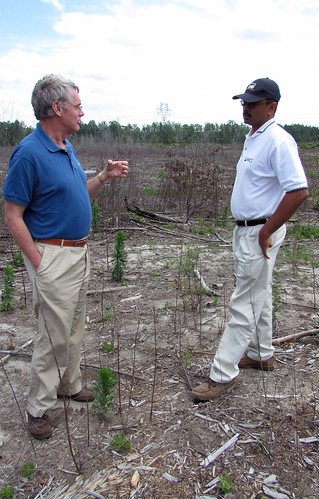 Bill Owen (left) confers with Smithfield District Conservationist Mike Faulk on the site of his Surry County plantings. Bill Owen (left) confers with Smithfield District Conservationist Mike Faulk on the site of his Surry County plantings.