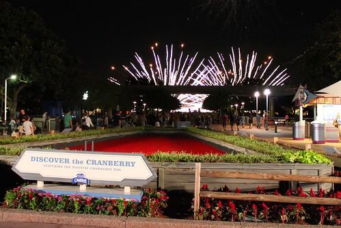 Cranberry bog and fireworks