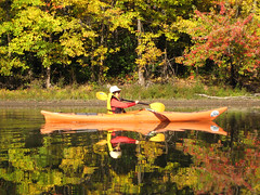 Thanksgiving on the river, paddling companion