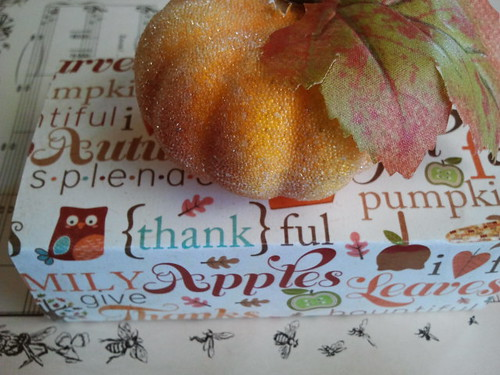 Pumpkin Petite Inspiration Box from Stevie