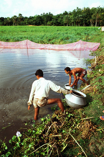 Aquaculture, Bangladesh. Photo by Mark Prein, 2006
