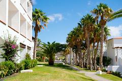 Fuerteventura 1046