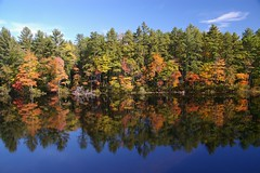 lake reflection (Johan_Leiden) Tags: autumn trees usa lake colour reflection fall newengland newhampshire fallfoliage foliage