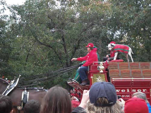 Cardinals World Series Parade 2011