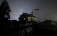 Halloween pt.2 (Matt Granz Photography) Tags: california wallpaper halloween birds misty night dark nikon photoshopped foggy eerie creepy tokina spooky bodega 1224mm allhallowseve d90